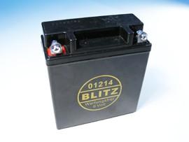 Batterie 6V/12Ah wartungsfrei (Gelakku)